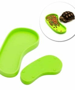 Mangeoire pour tortue terrestre en forme de pied vert