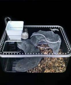 Aquarium pour tortue avec pompe à eau intégrée
