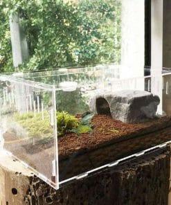 terrarium pour tortue transparent en acrylique