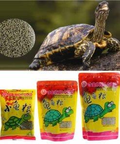 protéines pour tortue nourriture tortue de terre